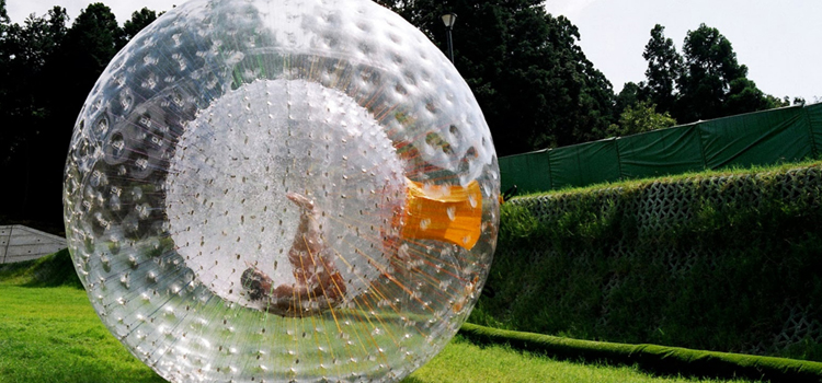 Human Zorb for Sale